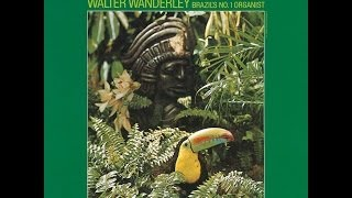 Download Walter Wanderley - Rainforest (1966) Full Album Video