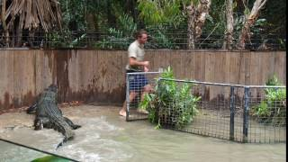 Download The Crocodile Attack Show at Hartley's Crocodile Adventures, Queensland Video