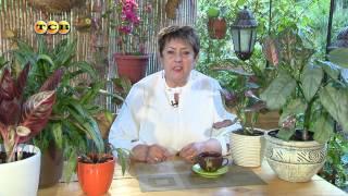 Download Аглаонема - Цветочная лавка Video