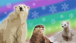 Download 10 Arctic Animals for Kids – Snow Animals for Kids – Polar Animals Video
