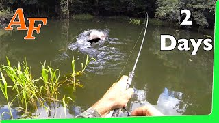 Download Catch n Cook 🔥 Tarpon Over Night Jungle fishing Adventure EP.351 Video
