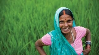 Download Empowering Women in Agriculture: Rural Women-led Vegetable Farming Project Video