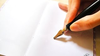 Download Primeros trazos en caligrafía con plumas metálicas desmontables Video