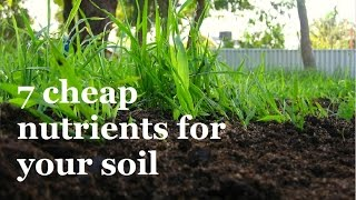 Download 7 Super Cheap ways to add Nutrients to your Soil Video