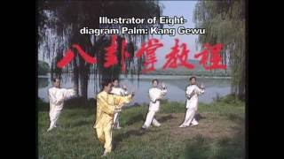 Download Chinese Wushu Association baqua video, history and modern styles and methods Video