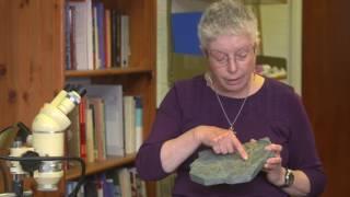 Download Eureka Moments: Professor Jenny Clack Video