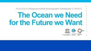Download The Ocean we Need for the Future we Want Video
