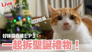 Download 【好味貓直播】EP3 一起拆聖誕禮物 Video