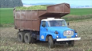 Download Tatra 148 Tatra Phoenix Siláže 2017 Video