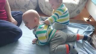 Download Dünyanın En Küçük Güreşçi İkizleri ★ Eğlenceli İkiz Bebek Ve Oyun Videoları ★ Video