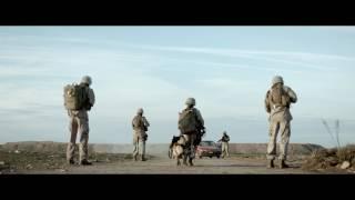 Download Megan Leavey - Trailer Video