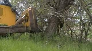 Download John Deere 850J pushing trees Video