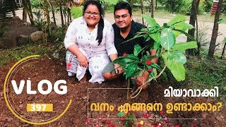 Download Yes, We Planted a Tree! - മിയാവാക്കി വനം എങ്ങനെ ഉണ്ടാക്കാം? from SR Jungle Resort, Anaikatty Video