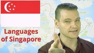 Download Languages of Singapore Video