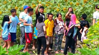 Download Blooming AGri tourism Park Philippines 10-01-2018 Video