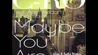 Download Asaf Avidan - Maybe You Are (Vijay & Sofia Zlatko Remix) Video