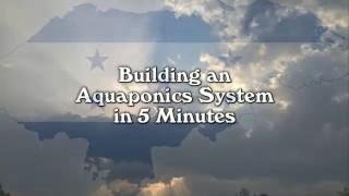Download A Time Lapse View of an Aquaponics System Build Video