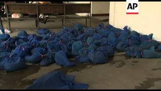 Download 100 pangolins seized in wildlife smuggling crackdown Video