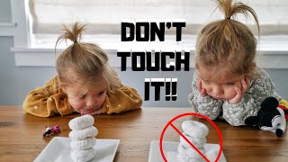 Download DON'T TOUCH IT CHALLENGE with TWINS Video