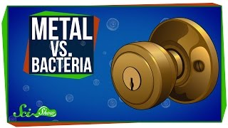Download Metal vs. Bacteria Video