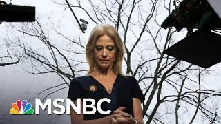 Download Kellyanne Conway's Media Missteps | AM Joy | MSNBC Video