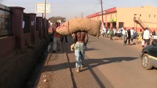 Download Lilongwe, Malawi Video