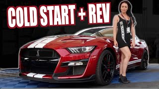 Download 2020 SHELBY GT500 Start up and REV at FORD NATIONALS 2019 Video