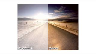 Download Why Buy Polarised Lenses? | Shade Station Video