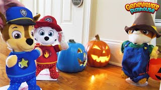 Download Paw Patrol Baby Pup Halloween & Cooking Contest Toy Learning Videos for Kids! Video