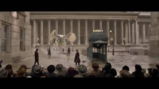 Download Fantastic Beasts and Where to Find Them - TV Spot 1 Video