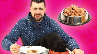 Download Cat Owners Try Cat Food Video