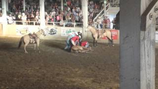 Download Horse breaks neck in rodeo Video
