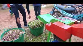 Download เครื่องสับหญ้าเนเปียร์2ระบบ โทร.085-0000-641 Video
