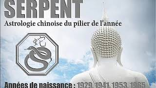 Download Prévisions 2019 - Natifs Serpent - Astrologie chinoise Video