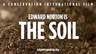Download Nature Is Speaking – Edward Norton is The Soil | Conservation International (CI) Video