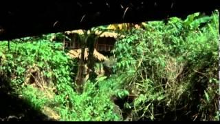 Download Portés Disparus 2: Pourquoi ? - [Film] - 1985 Video