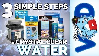 Download 3 Simple Steps for Crystal Clear Water | Big Al's Video