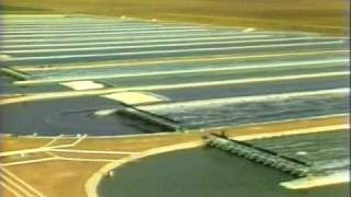 Download First Commercial Spirulina Farm in California Video