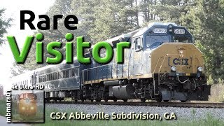 Download [6n][4k] Rare Visitor on the CSX Abbeville Sub, GA 05/01/2019 Video