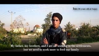 Download Child Laborers in Israeli Agricultural Settlements in the Jordan Valley, Palestine Video