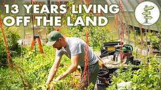 Download 13 Years Living Off the Land - Man Shares REAL Homestead Experience Video