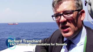 Download EU, FAO move to tackle maritime challenges in Somalia Video