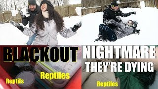 Download BLACKOUT - THE ANIMALS ARE DYING | Emergency Situation & Building Mystery Snow Animals Video