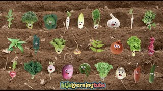 Download Vegetable Song for Kids- Sing along with the lyrics below Video