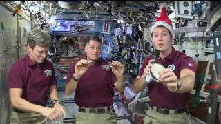Download Space Station Crew Celebrates the Holidays Aboard the Orbital Lab Video