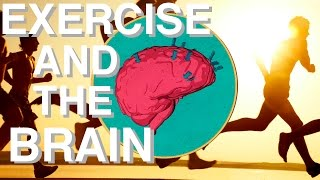 Download WHY Exercise is so Underrated (Brain Power & Movement Link) Video