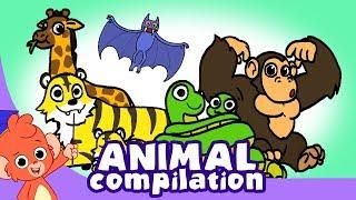 Download Learn Animals for Kids   Zoo Animal Cartoon Compilation for Children   Safari Cartoon Cartoons Video
