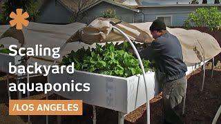 Download Backyard aquaponics as self-sustained farm in (sub)urban LA Video