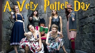 Download A VERY POTTER DAY AT HOGSMEADE   Vlog Video