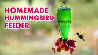 Download Make a HUMMINGBIRD FEEDER Video